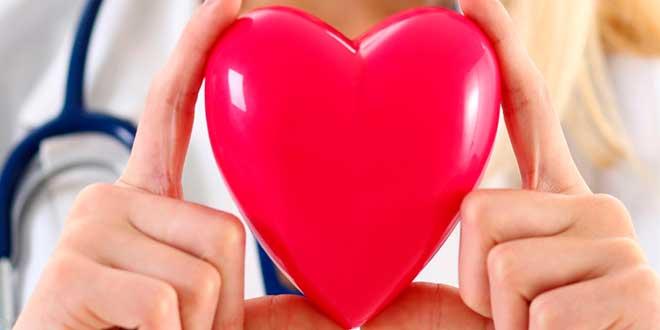 Niacina Salud Cardiovascular