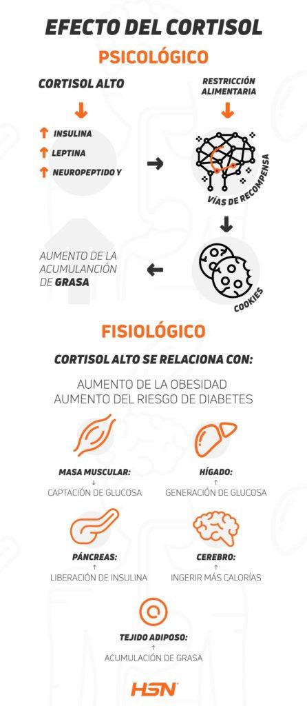 Efectos del Cortisol