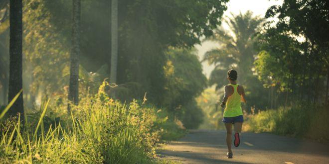 Ejercicios Cardiovasculares: Mejora tu condición física y quema grasa