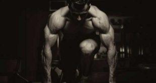 Ganar Masa Muscular Consejos de Entrenamiento