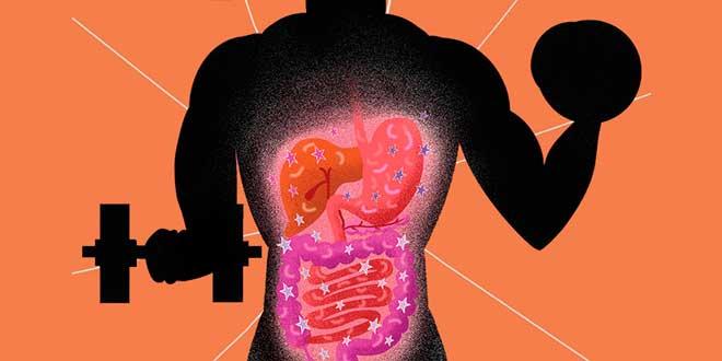 Dieta restaurar flora intestinal