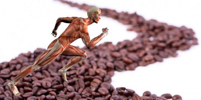 La dosis óptima de Cafeína