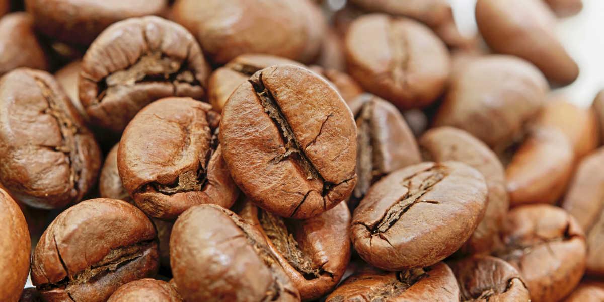 Granos de café como fuente de cafeína