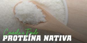 Qué es la Proteína Navita o Native Whey
