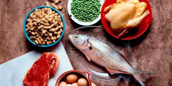 ¿Conoces las fuentes de proteínas?