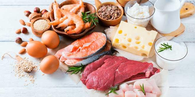 ¿Cuál es la Cantidad Óptima de Proteína para Ganar Músculo?