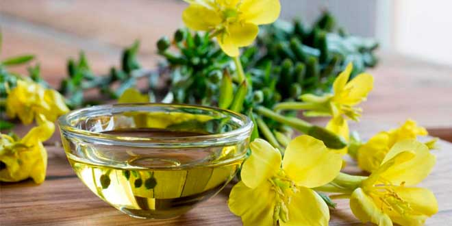 Aceite de Onagra: Qué es, Para qué Sirve, Propiedades y Beneficios para la Salud