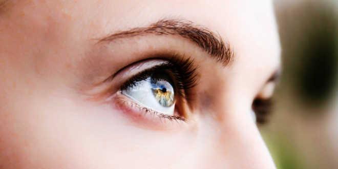 Ácidos grasos esenciales para la visión