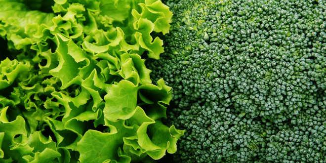 Verduras verdes y vitaminas