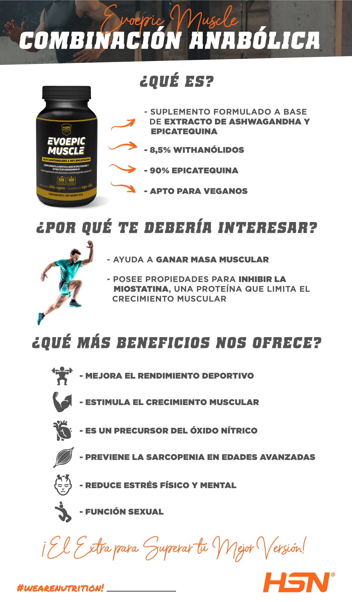Evoepic Muscle de HSNsports