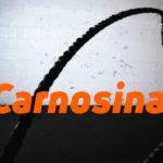 Carnosina como antioxidante