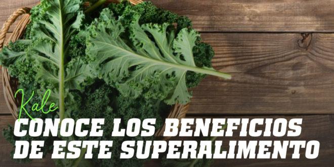 Superalimento Kale: Qué es, Propiedades y Recetas