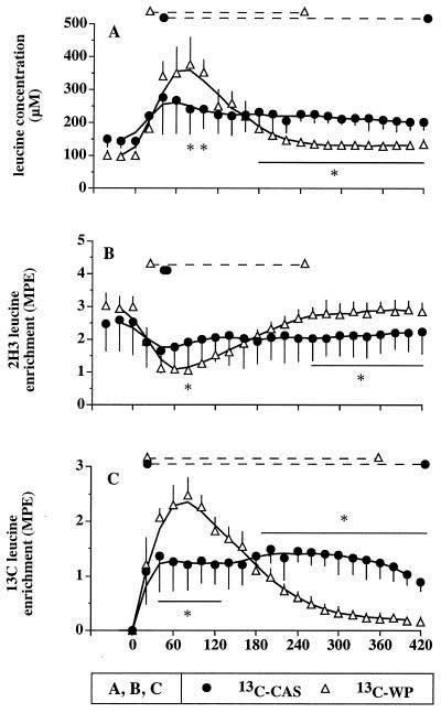 Concentraciones de leucina en plasma