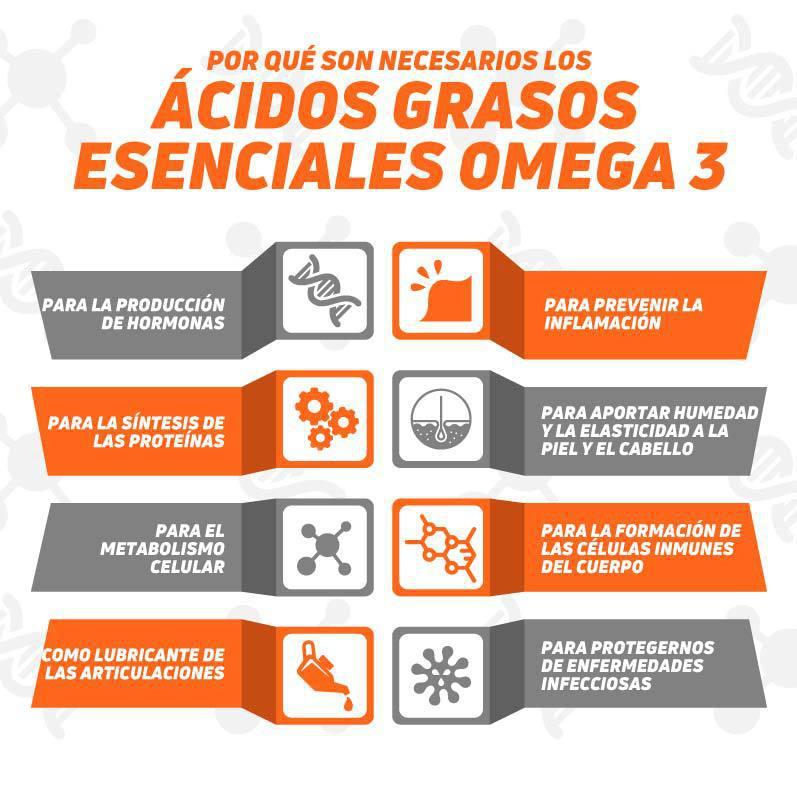 Necesidad de los Ácidos grasos Omega 3