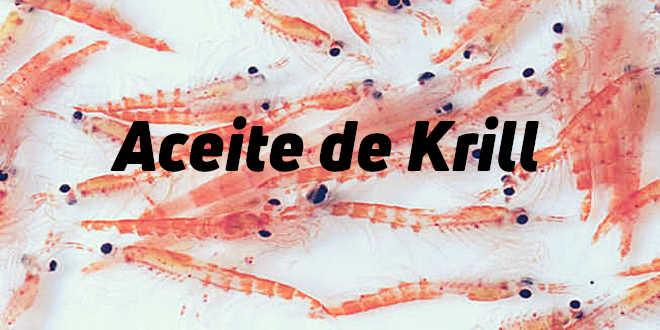 Aceite de Krill – Propiedades y Beneficios