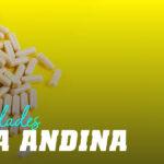 Qué es y para qué sirve la Maca Andina
