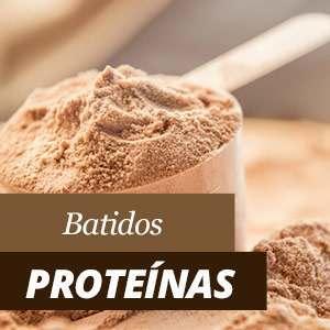 Batidos Proteinas