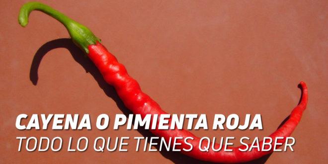 Cayena o Pimienta Roja – ¡Todo lo que debes saber!