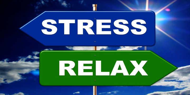 Damiana and Stress