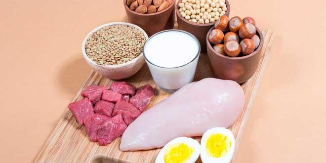 Dieta y Aminoácidos