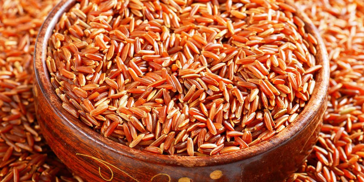 Arroz rojo vs levadura de arroz rojo
