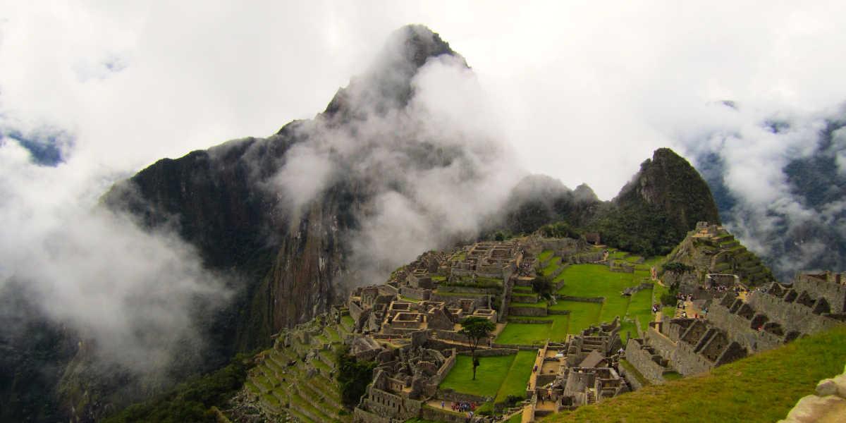Maca Andina Inca