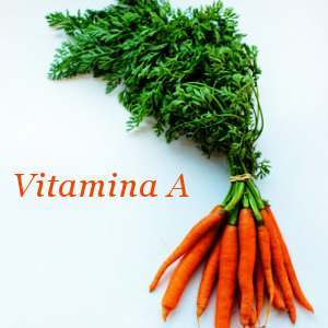 Ingredientes con vitamina A
