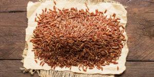 ¿Qué es y para qué sirve la levadura de arroz rojo?