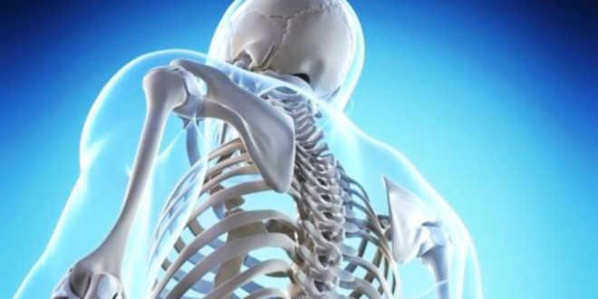 Vitamina K y salud ósea