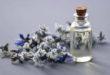 Aceite de Borraja – Aliado para la salud de la piel madura