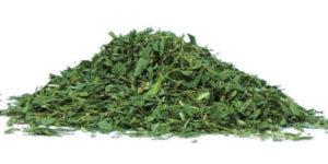 Alfalfa y sus efectos y beneficios