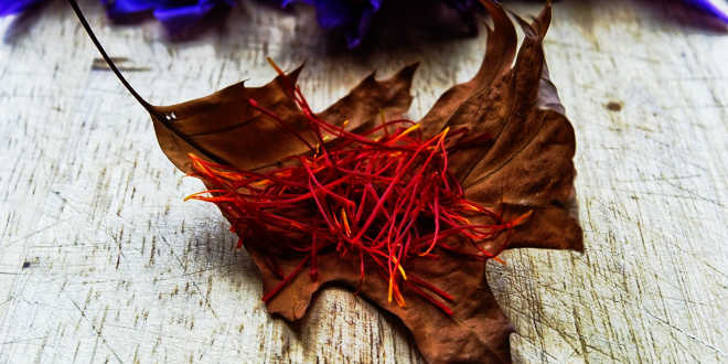 Ingrediente azafrán bulbo crocus sativus
