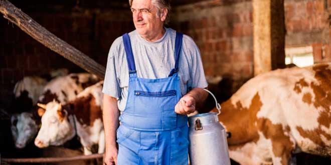 Diferencias entre la leche humana y la animal