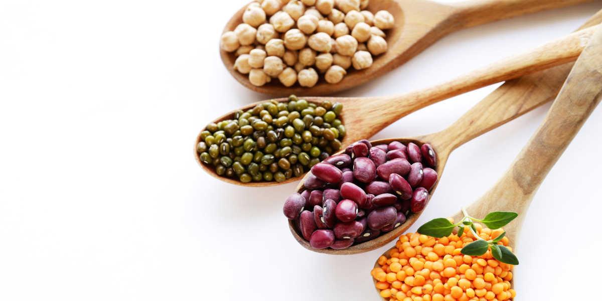 Legumbres fuente proteínas
