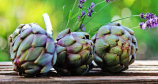 Propiedades de la alcachofa