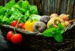 Betacaroteno – Fuente de riqueza natural de vitamina A para el organismo