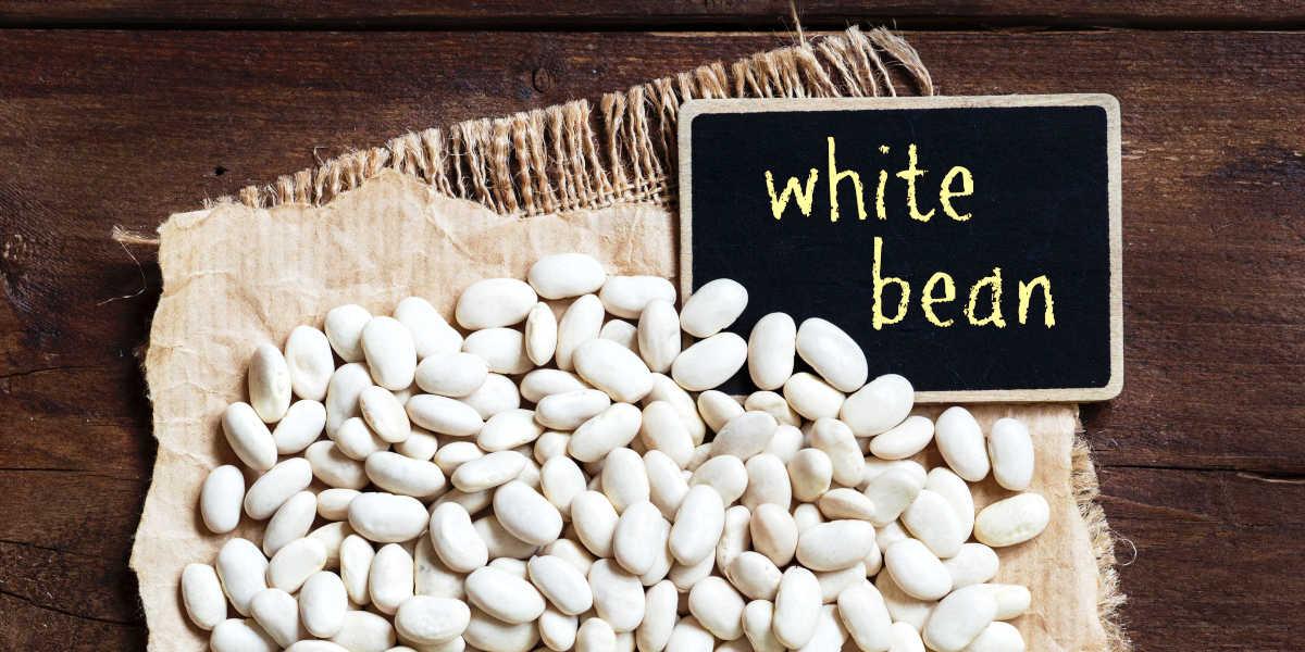 ¿Cuáles son las propiedades de las alubias blancas?