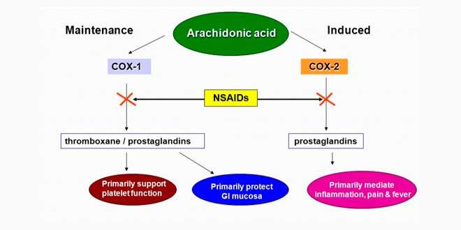 Acción de NSAIDs sobre la inhibición de COX