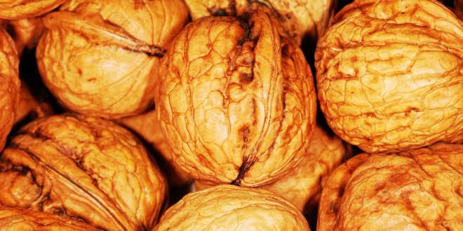 Nueces fuente de selenio