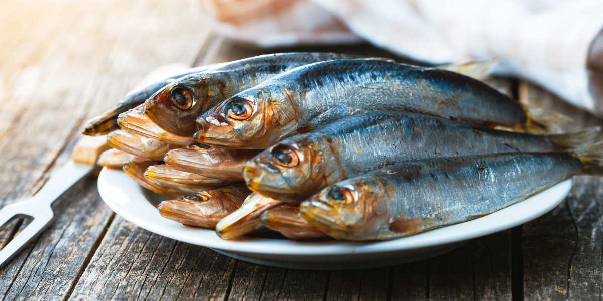 ¿Es la sardina fuente de hierro?