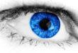 Zeaxantina – Protege la salud de tus ojos