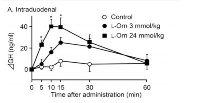 expresión mRNA de la Grelina