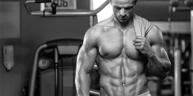 Creatina y Crecimiento Muscular