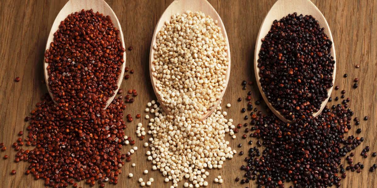 Quinoa roja, blanca y roja
