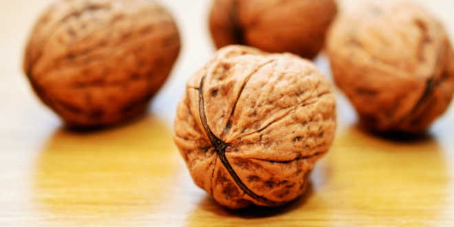 Nueces fuente vitamina E
