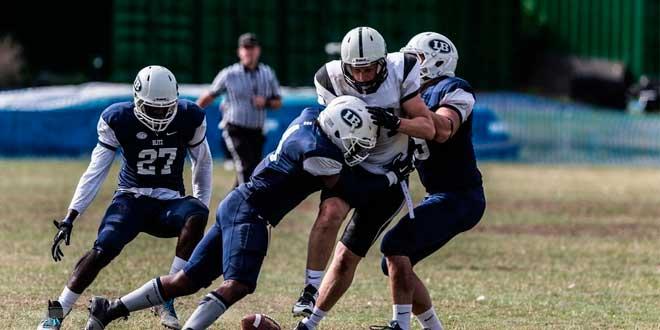 Estudio creatina jugadores de rugby y calvicie