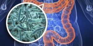 Cómo afecta la dieta cetogénica a la microbiota intestinal