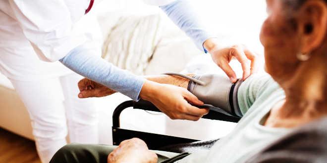 presión arterial lactobacillus helveticus