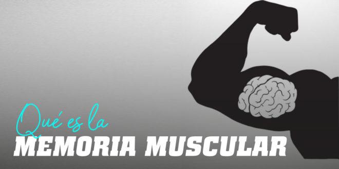 ¿Qué es la Memoria Muscular?