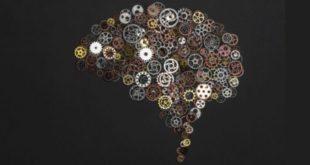 ¿Cómo afecta el ayuno intermitente al cerebro?